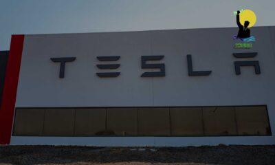 Elon Musk confirms Tesla's entry into India